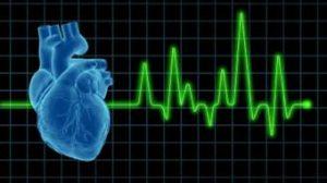heart-stresstest-cardiovascular-1